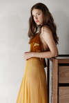 Mustard Yellow Silk Chiffon and Velvet Midi Dress
